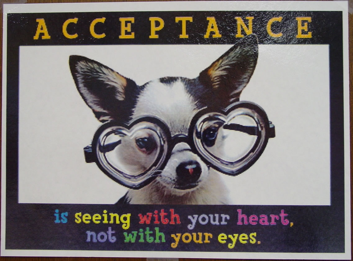 acceptance Acceptance is an american rock band from seattle, washington, formed in 1998 they released their first ep, lost for words, in 2000, followed by black lines.