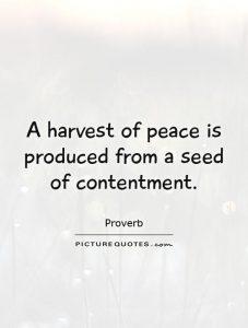 contentment2