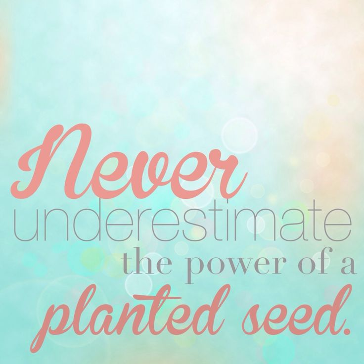 Planted Seed Heart Treasure Fascinating Planting Seeds Inspirational Quotes