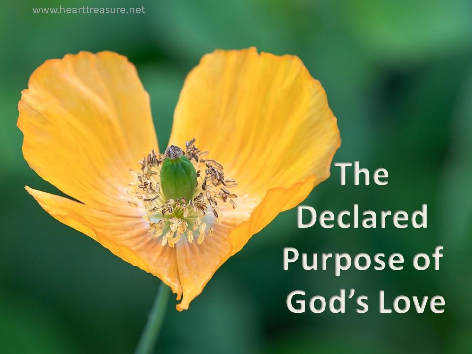 purpose of Gods love